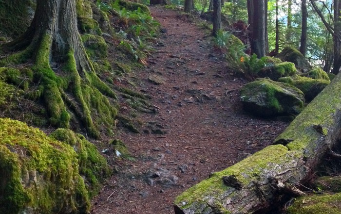 Moran State Park Hiking