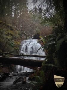LEANTO Moran State Park Cascade Falls