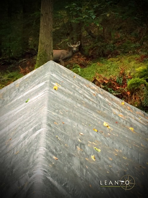 LEANTO End of Glamping Orcas Island