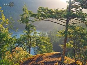 LEANTO Moran State Park Sunrise Rock
