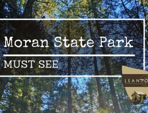 Must see:  Moran State Park