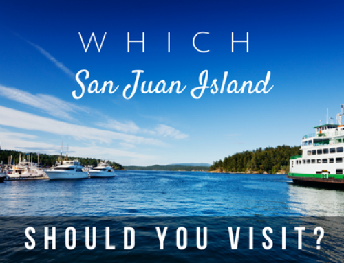 Which San Juan Island Should You Visit?