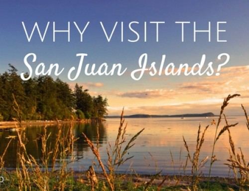 Why visit the San Juan Islands?