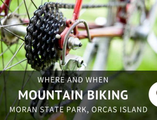 Mountain Biking in Moran State Park